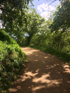 Queen's Valley path 2